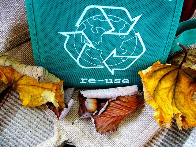 "4 motivi per diventare ""ecologici"""