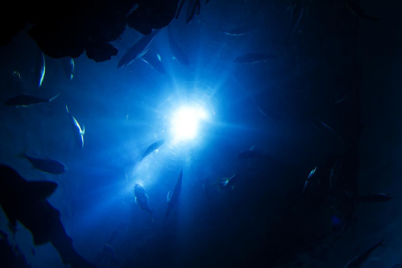 Com'è profondo il mare