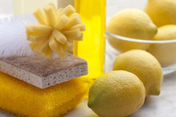 spugne e limoni immagine