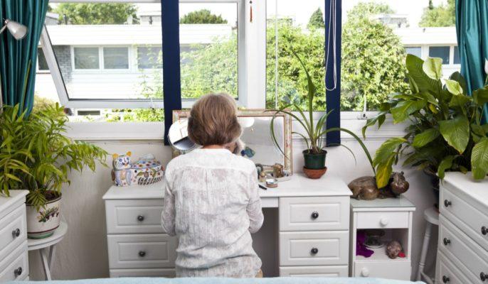 piante per l'inquinamento domerstico