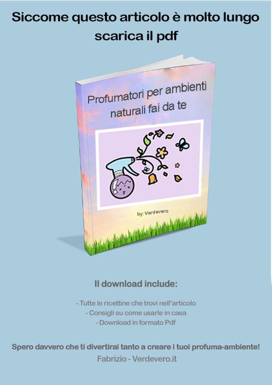 ebook profumatori per ambienti naturali fai da te