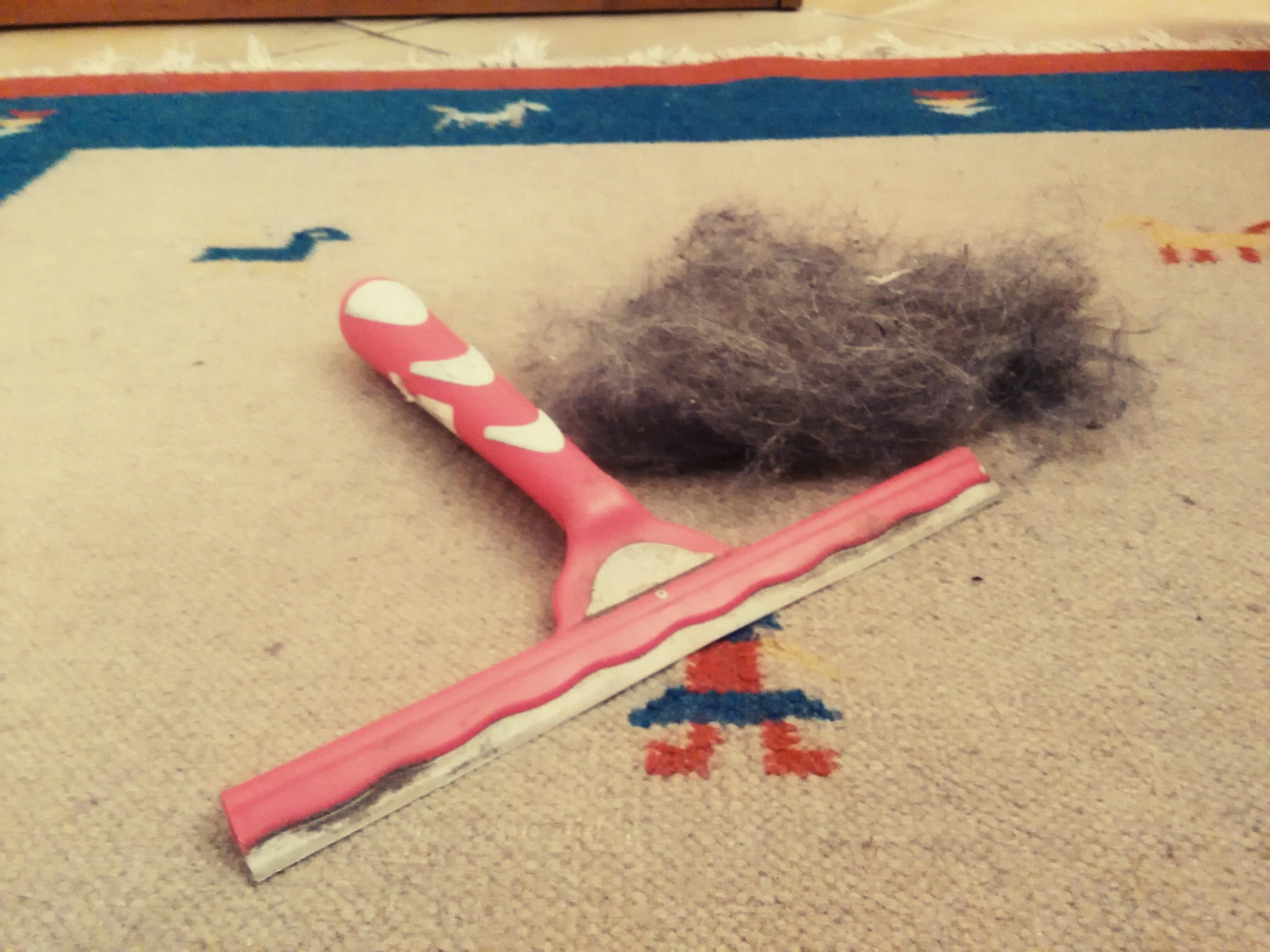 come pulire tappeti dai peli