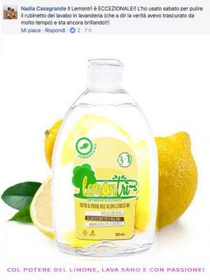 Detersivo ecologico Lemontrì