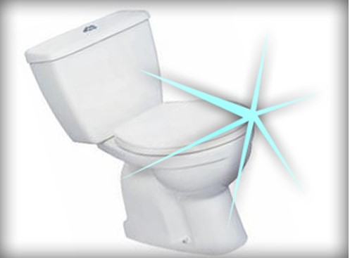 come pulire il wc