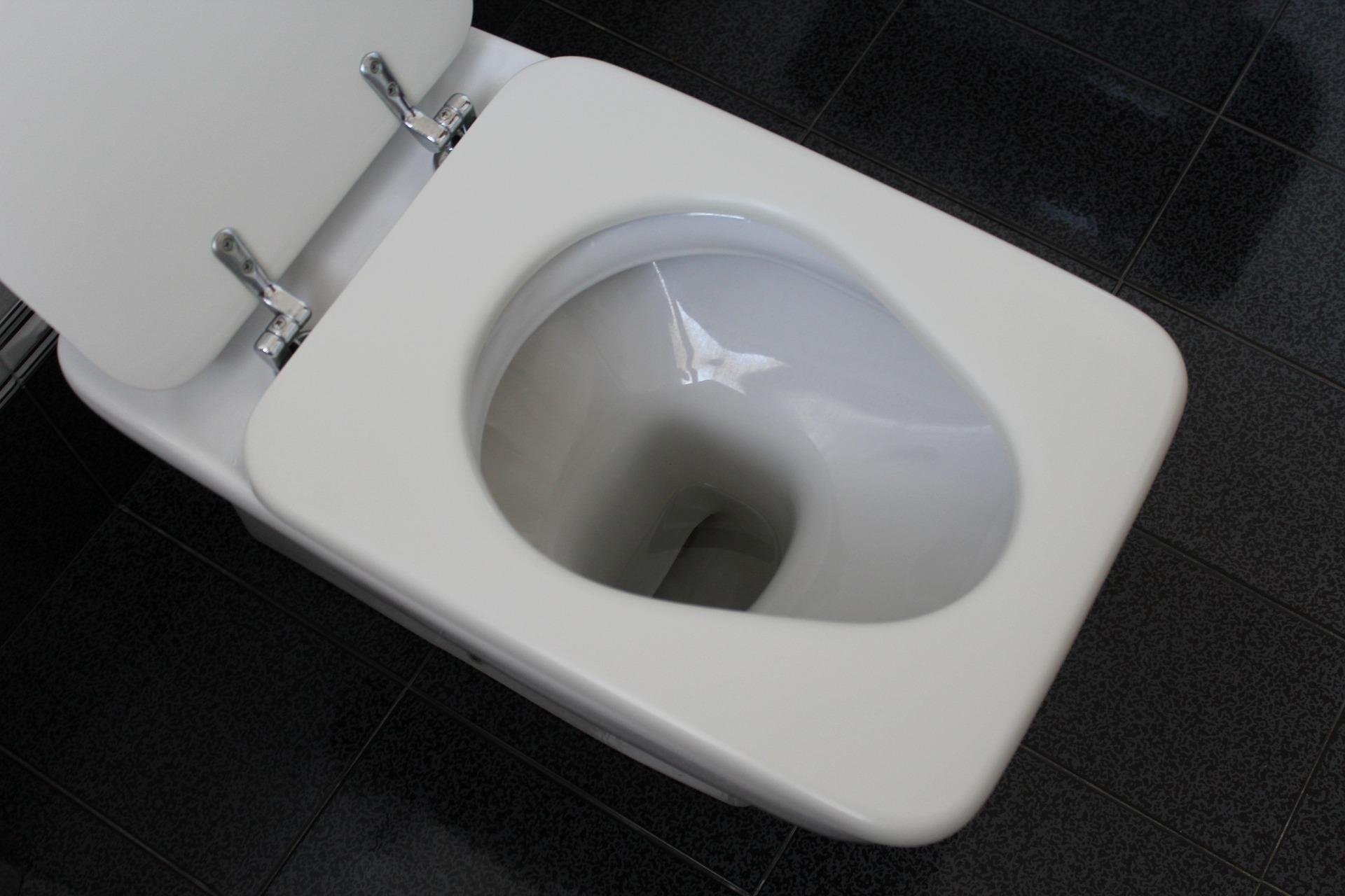 interno wc