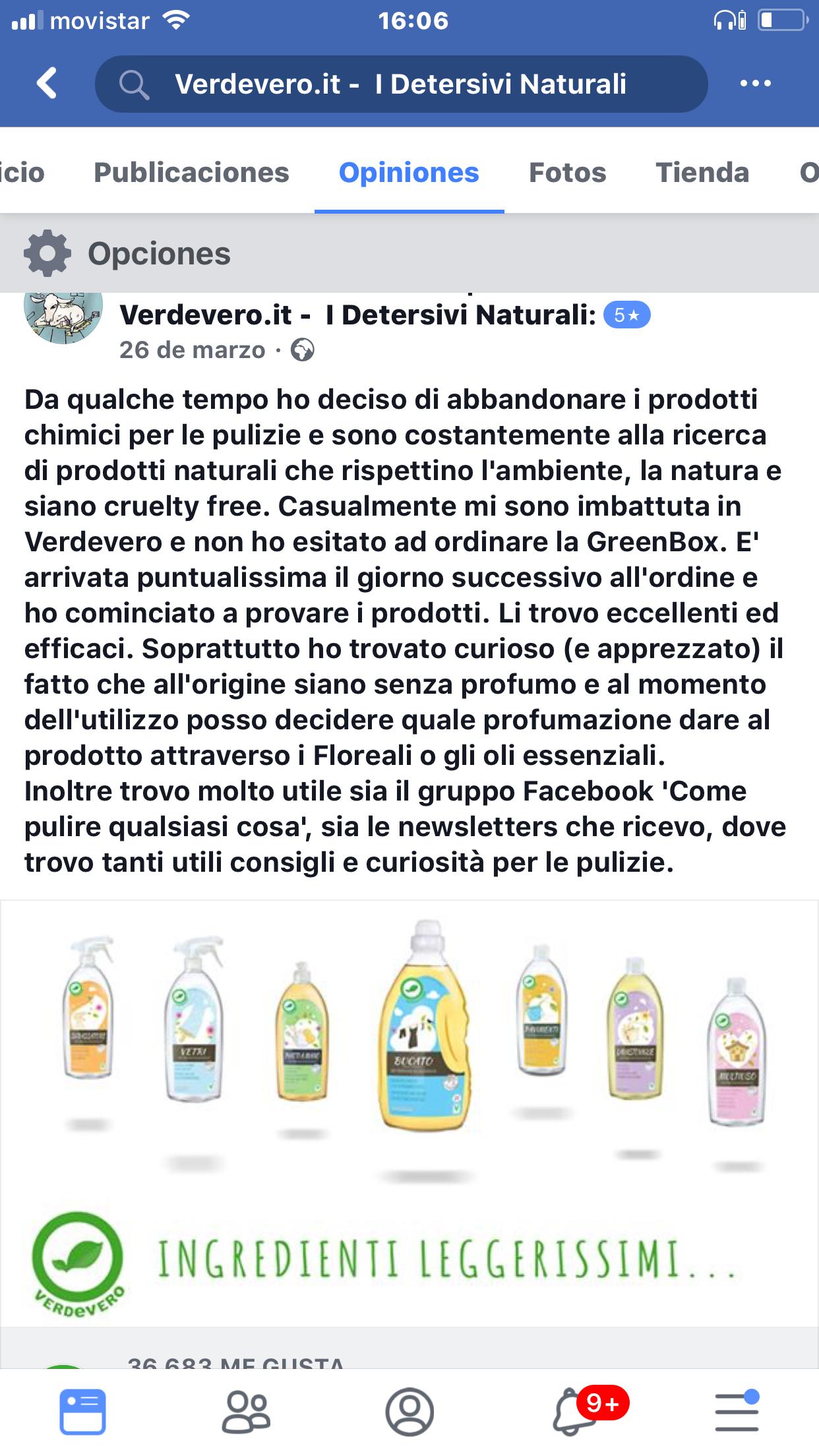 recensione pulizie facebook