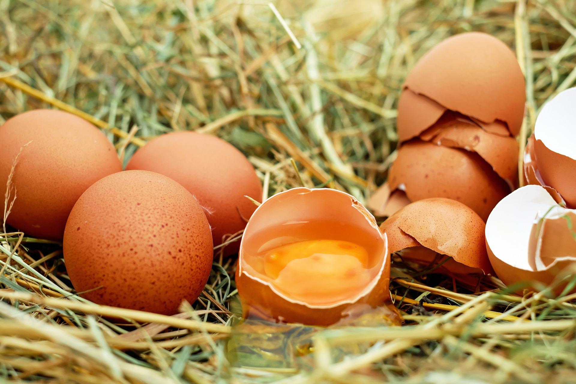 Come pulire le macchie di uovo dalla tovaglia di cotone bianca